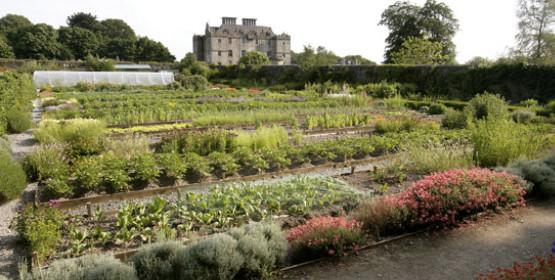 Portumna Castle Garden
